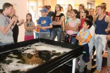 Vannastavne aktivnosti – Dom za decu sa oštećenjem sluha