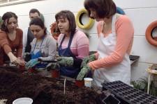Nastava cvećarstva u DB Borska