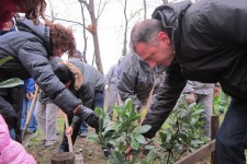 Nove sadnice u Terapijskom vrtu