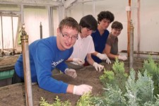 Projekat hortikulturna terapija se nastavlja