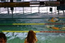 Prvenstvo Beograda u plivanju za osobe sa invaliditetom 2014.