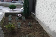 Završeno uređenje zelene površine pored objekta DB Čukarica