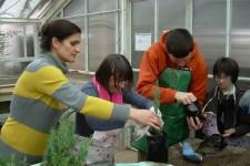 Uticaj hortikulturne radionice na osobe višestruko ometene u razvoju